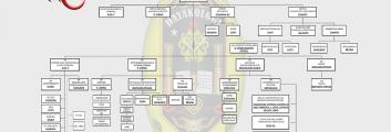 Struktur Kepengurusan & Managemen